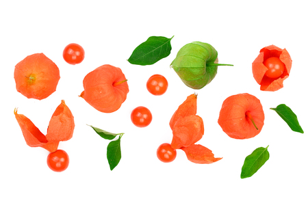 physalis with leaves isolated on white background with copy space for your text. Top view. Flat lay pattern.