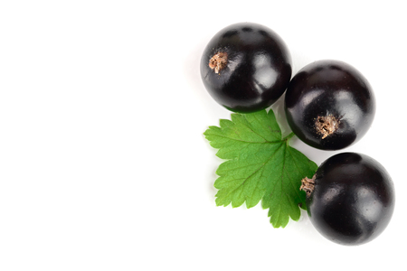 black currant with leaves isolated on white background with copy space for your text. Top view. Flat lay pattern.