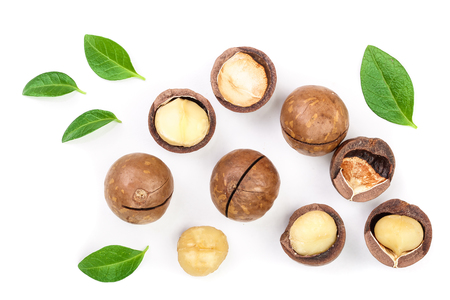 Shelled and unshelled macadamia nuts with leaves isolated on white background. Top view. Flat lay pattern.