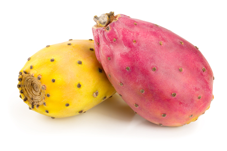 red end yellow prickly pear or opuntia isolated on a white background