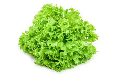 Lettuce leaf isolated on white background close up.