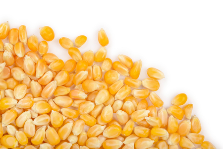 The corn seeds isolated on white background with copy space for your text. Top view. Flat lay Stock Photo