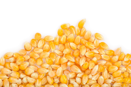 The corn seeds isolated on white background with copy space for your text. Top view. Flat lay. Stock Photo