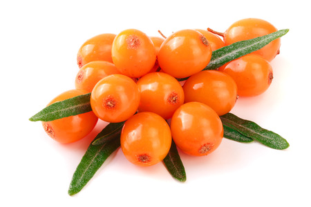 Sea buckthorn. Fresh ripe berry with leaves isolated on white background macro Banque d'images