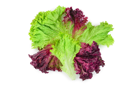 fresh red coral and green salad or lettuce isolated on the white background. Top view. Flat lay.