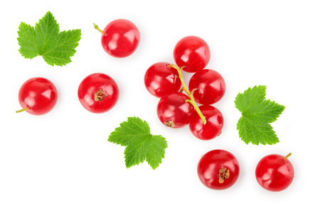 Red currant berry with leaf isolated on white background. Top view. Flat lay pattern