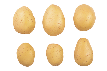 Young potato isolated on white background. Harvest new. Top view. Flat lay .