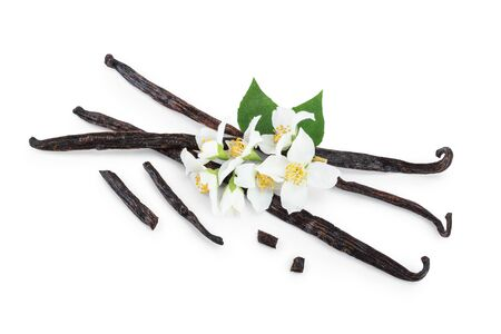 Vanilla sticks with flower and leaf isolated on white 스톡 콘텐츠
