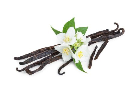 Vanilla sticks with flower and leaf isolated on white background 스톡 콘텐츠
