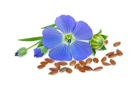 flax seeds with flower isolated on white background