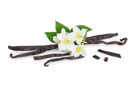 Vanilla sticks with flower and leaf isolated on white background 写真素材