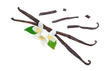 Vanilla sticks with flower and leaf isolated on white background. Top view. Flat lay 写真素材