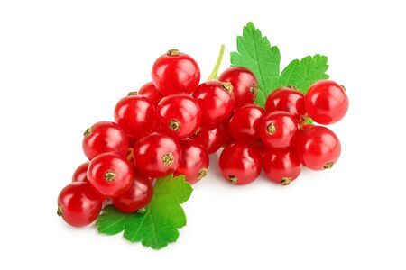 Red currant berries with leaves isolated on white background