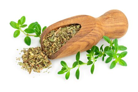 Dried thyme leaves in the wooden scoop, with fresh thyme isolated on white background. Top view 写真素材