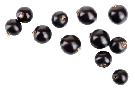 black currant isolated on white background. Top view. Flat lay pattern Stok Fotoğraf - 129831217