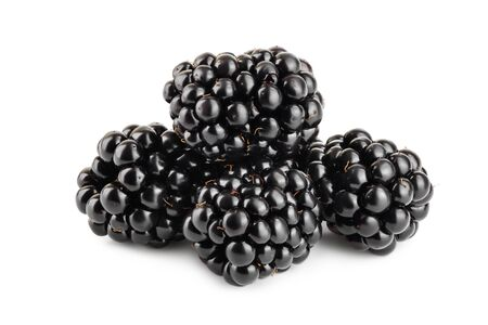 blackberry isolated on a white background closeup Stock Photo