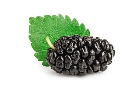 Mulberry with leaf isolated on white background 免版税图像
