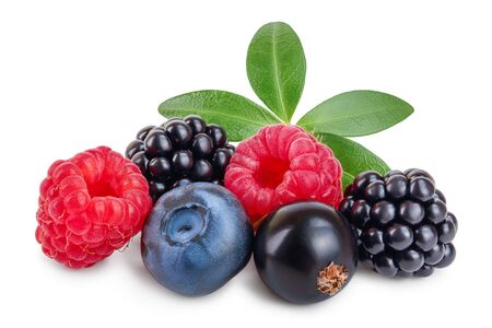 mix of blackberry blueberry raspberry black currant with leaf isolated on white background. Reklamní fotografie
