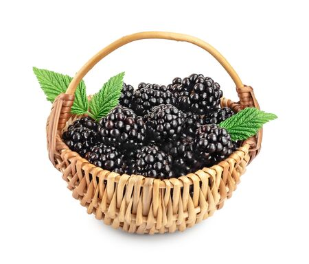 blackberry in basket with leaf isolated on a white background closeup