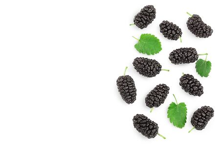 Mulberry with leaf isolated on white background with copy space for your text.Top view. Flat lay . Stockfoto