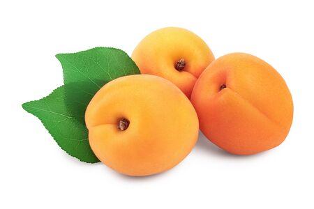 Apricot fruit isolated on white background macro. Imagens