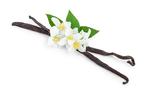 Vanilla sticks with flower and leaf isolated on white background. Banque d'images - 132217576