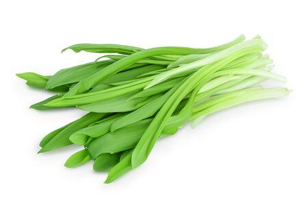 Ramson bunch vegetable isolated on white background Reklamní fotografie
