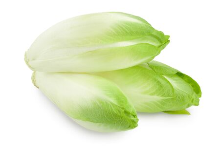 Chicory salad isolated on white background with clipping path and full depth of field.