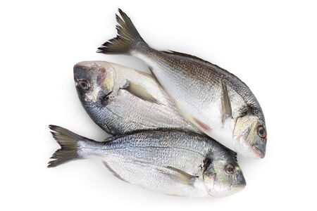 Fish dorado isolated on white background with clipping path and full depth of field. Top view. Flat lay Standard-Bild
