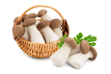 King Oyster mushroom or Eringi in wicker basket isolated on white background and full depth of field.