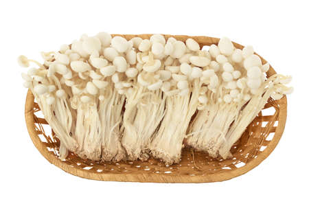 Enoki mushroom, Golden needle mushroom in a wicker basket isolated in white background with clipping path. Top view. Flat lay
