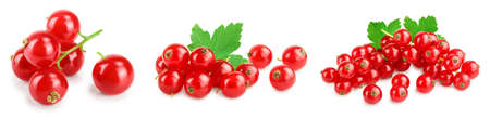 Red currant berries with leaf isolated on white background. Set or collection Standard-Bild