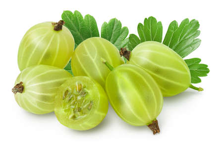 Green gooseberry with half isolated on white background  and full depth of field