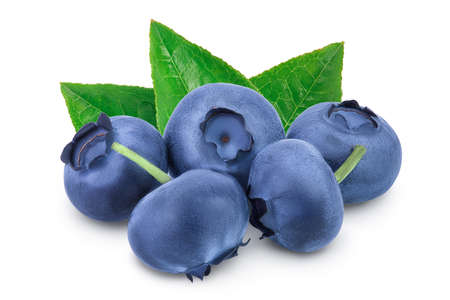fresh blueberry isolated on white background closeup  full depth of field