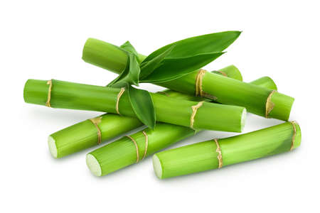 Green bamboo with leaves isolated on white background with and full depth of field Banque d'images