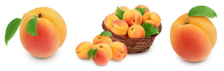 apricot fruit with half and slices isolated on white background with full depth of field. Set or collection Banque d'images