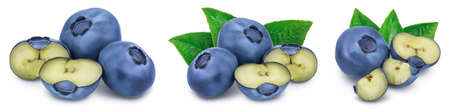 fresh blueberry isolated on white background closeup with full depth of field. Set or collection