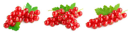 Red currant berries with leaf isolated on white background. Set or collection Banque d'images