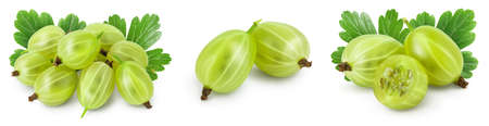 Green gooseberry isolated on white background. Set or collection