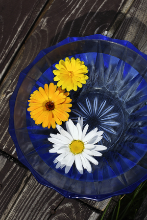 Flowers floating in blue bowl, flowers for spa