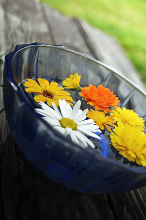 Flowers floating in blue bowl