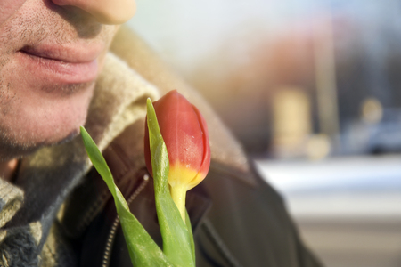 Man hold red tulip in his hand on the blurred background of a street