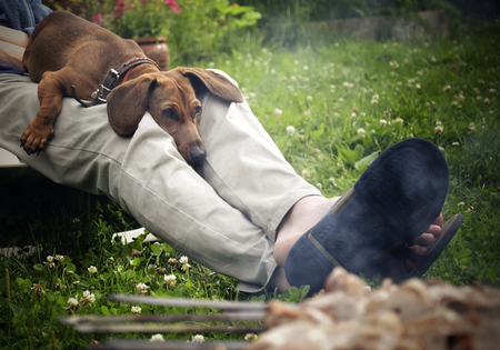 Dog resting on the lap of the owner near the grill with meat Zdjęcie Seryjne