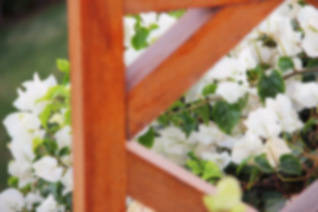 grey eyed: wooden fence and white flowers Perennial and annual Garden, plants in the flowerbed blurred