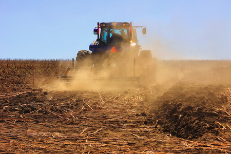 combine harvester working in action on the field. Agriculture. Cultivated area. The concept of agronomy, agriculture, livestock.