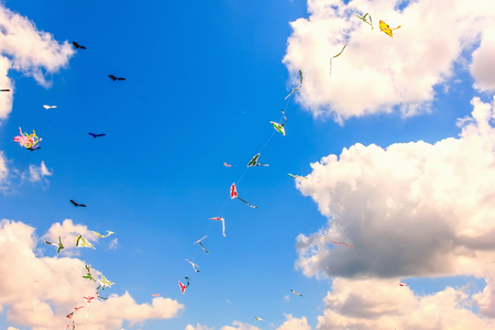 Colorful kite free to fly in the clear sky, a beautiful summer day, Kite Festival Stock Photo
