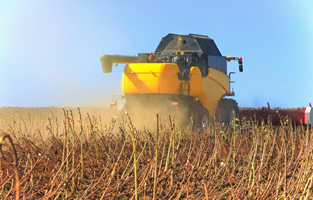 Yellow harvester working on a wheat field. Agronomy, the concept of farming. Agricultural machinery for fields  Stock Photo