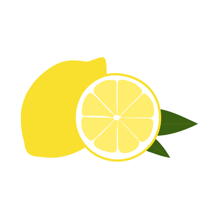 Vector illustration of lemon.