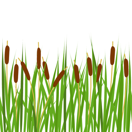 Seamless border with reeds. Horizontal seamless pattern border.