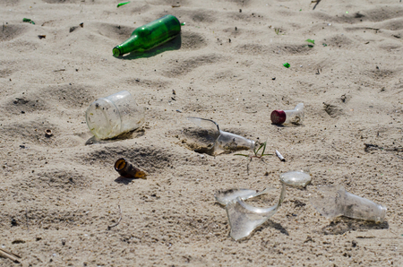 pieces of glass bottles among the shells on the sandy beach